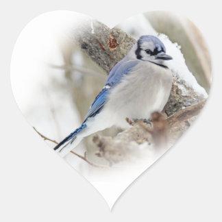 Blue Jay in Winter Snow Heart Sticker