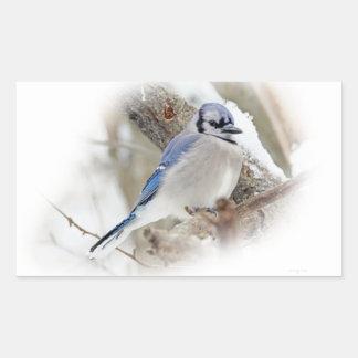 Blue Jay in Winter Snow Sticker