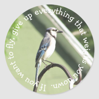 Blue Jay Inspirational Quote Sticker