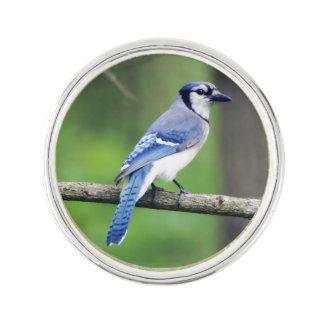 Blue Jay Lapel Pin