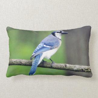 Blue Jay Lumbar Pillow