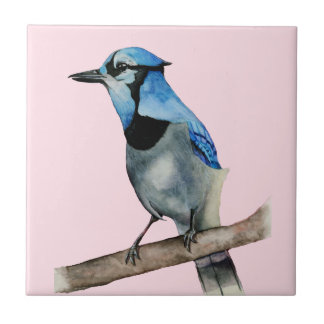 Blue Jay on Branch Watercolor Painting Tile