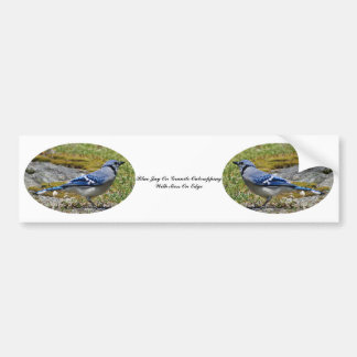 Blue Jay On Granite Outcropping With Moss On Edge Bumper Sticker