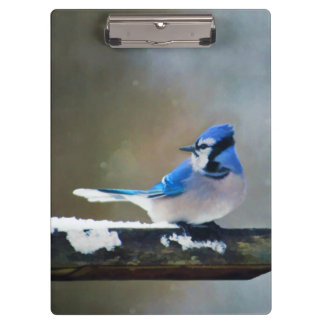 Blue Jay Painting - Original Bird Art Clipboard