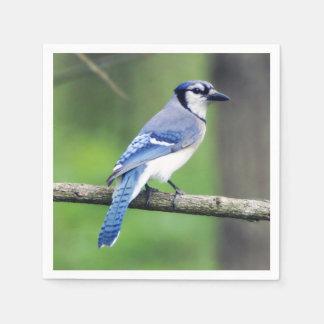Blue Jay Paper Napkin