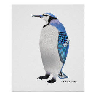 Blue Jay Penguin Posters