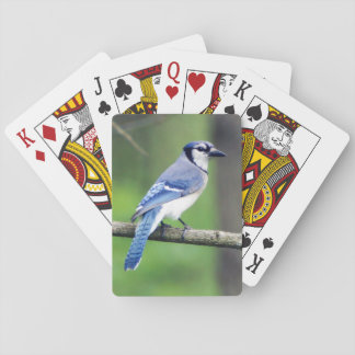 Blue Jay Playing Cards