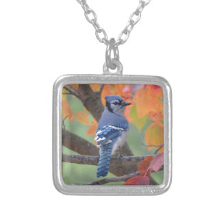 Blue Jay Silver Plated Necklace