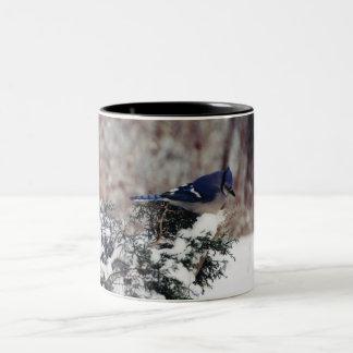 blue jay snow coffee cup