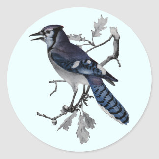 Blue Jay Vintage Cut Out Round Sticker