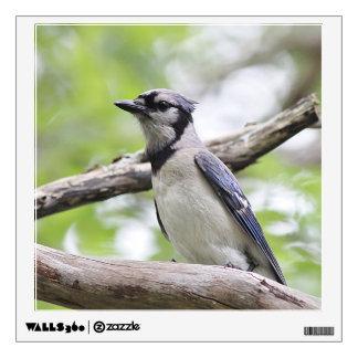 Blue Jay Wall Sticker