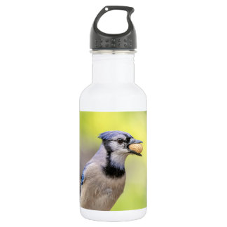 Blue jay with a peanut 532 ml water bottle
