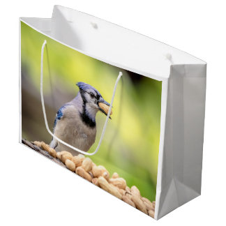 Blue jay with a peanut large gift bag