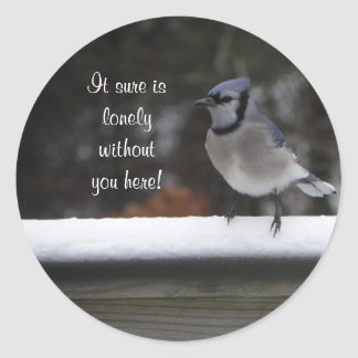Blue Jay: Without You Here Stickers