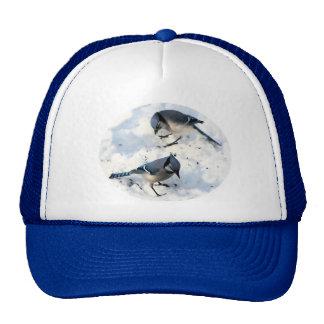 Blue Jays in Snow Trucker Hat