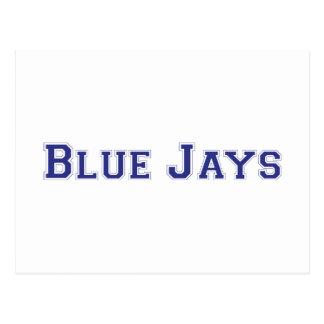 Blue Jays square logo Postcard