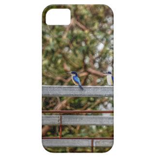 BLUE KINGFISHER QUEENSLAND AUSTRALIA ART EFFECTS iPhone 5 COVERS