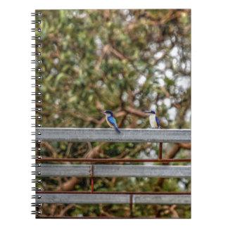 BLUE KINGFISHER QUEENSLAND AUSTRALIA ART EFFECTS NOTEBOOKS
