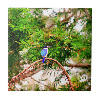BLUE KINGFISHER QUEENSLAND AUSTRALIA CERAMIC TILES