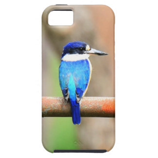 BLUE KINGFISHER QUEENSLAND AUSTRALIA iPhone 5 CASE