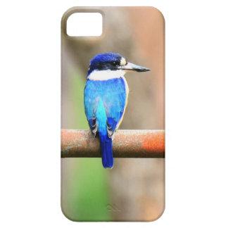 BLUE KINGFISHER QUEENSLAND AUSTRALIA iPhone 5 COVERS
