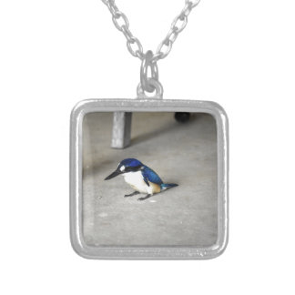 BLUE KINGFISHER QUEENSLAND AUSTRALIA SILVER PLATED NECKLACE