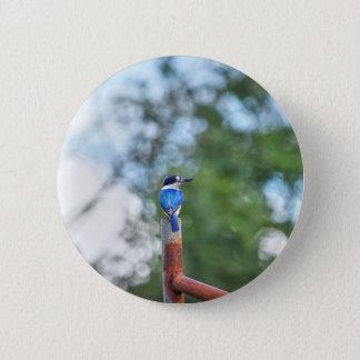 BLUE KINGFISHER RURAL QUEENSLAND AUSTRALIA 2 INCH ROUND BUTTON