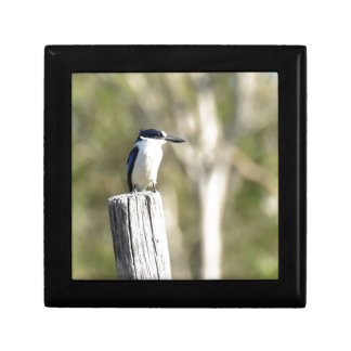 BLUE KINGFISHER RURAL QUEENSLAND AUSTRALIA GIFT BOX
