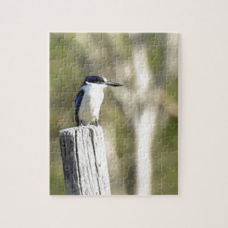 BLUE KINGFISHER RURAL QUEENSLAND AUSTRALIA JIGSAW PUZZLE