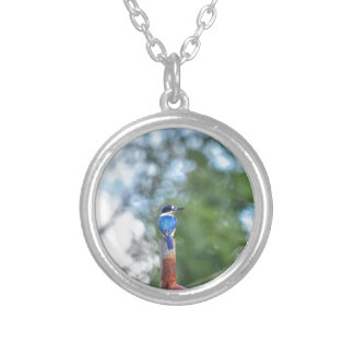 BLUE KINGFISHER RURAL QUEENSLAND AUSTRALIA SILVER PLATED NECKLACE