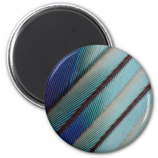 Blue Lilac Breasted Roller feather 2 Inch Round Magnet