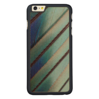 Blue Lilac Breasted Roller feather Carved® Maple iPhone 6 Plus Case