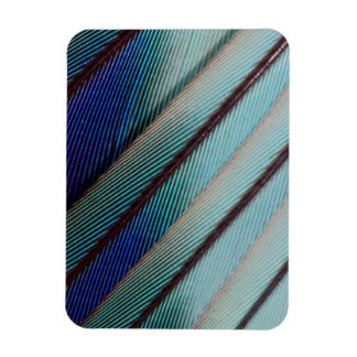 Blue Lilac Breasted Roller feather Rectangular Photo Magnet