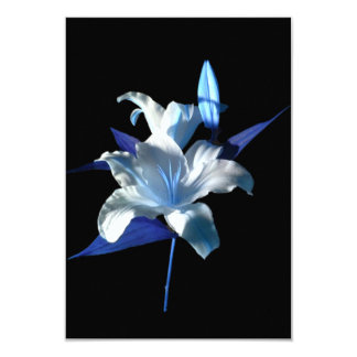Blue Lily on an Invitation