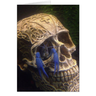 Blue lobster crayfish hanging out in a skull eye card