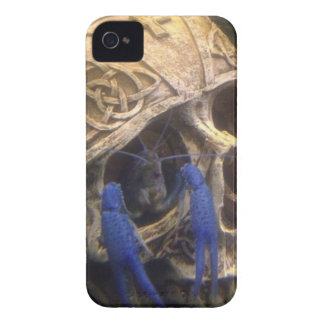 Blue lobster crayfish hanging out in a skull eye iPhone 4 covers