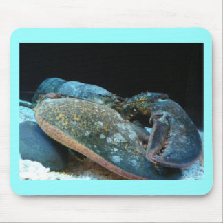 blue lobster mouse pad