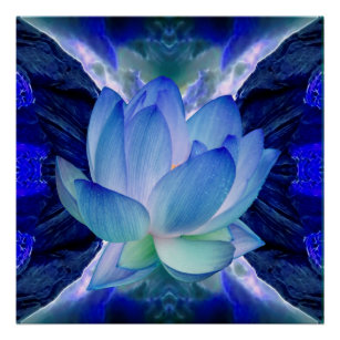 Blue lotus flower posters posters prints poster printing zazzle ca blue lotus flower poster mightylinksfo