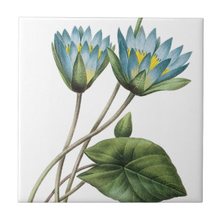 BLUE LOTUS FLOWERS TRIVET