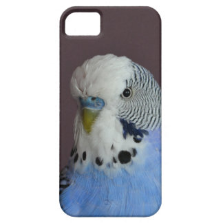 Blue Lovely Budgie Case For The iPhone 5