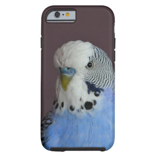 Blue Lovely Budgie Tough iPhone 6 Case