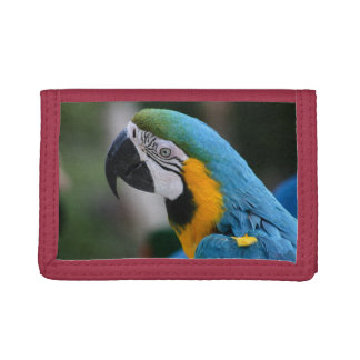 Blue Macaw Parrot TriFold Nylon Wallet moneyholder