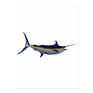 Blue Marlin Fish Postcard