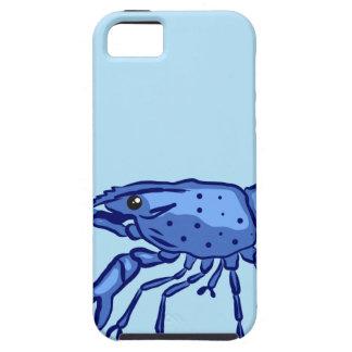 Blue Marron Sketch iPhone 5 Cases