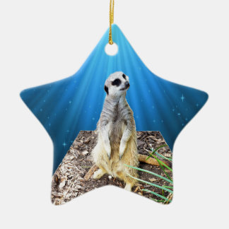 Blue Meerkat Night,_ Ceramic Ornament