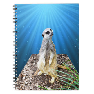 Blue Meerkat Night,_ Notebook