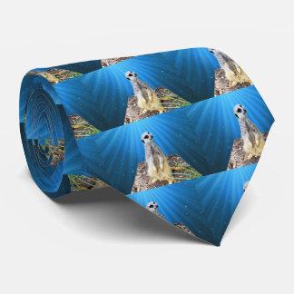 Blue Meerkat Night,_ Tie