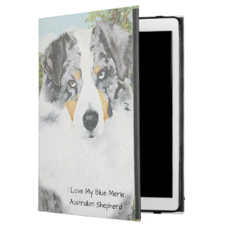 Blue Merle Australian Shepherd Dog Portrait