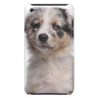 Blue Merle Australian Shepherd puppy close-up iPod Touch Case-Mate Case