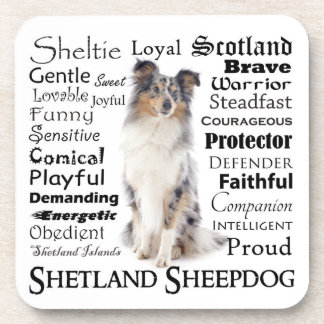 Blue Merle Sheltie Traits Coaster Set
